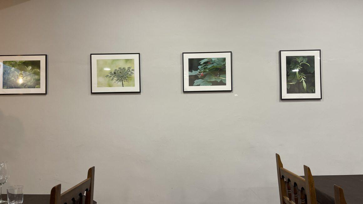 Exposición de Xavier Mamano en el Restaurant Anhel